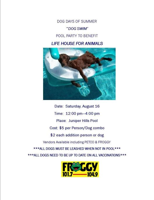 LIFE House for Animals Dog Swim at Juniper Park