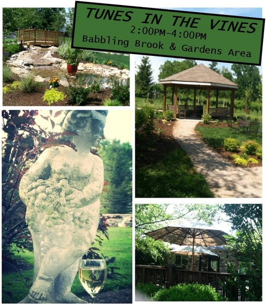 Equus Run Tunes in the Vines by the Water Gardens