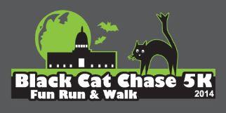 Black Cat Chase