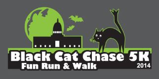 Black Cat Chase