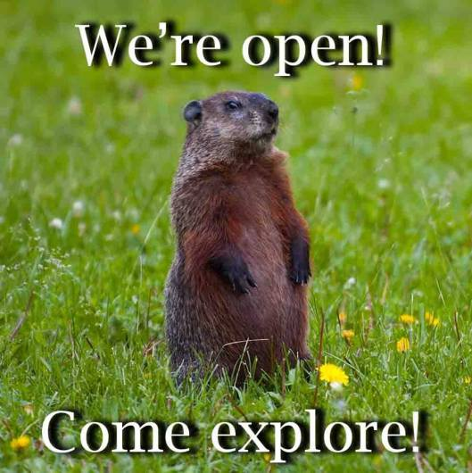 Salado Wildlife Center 2015 - We're Open