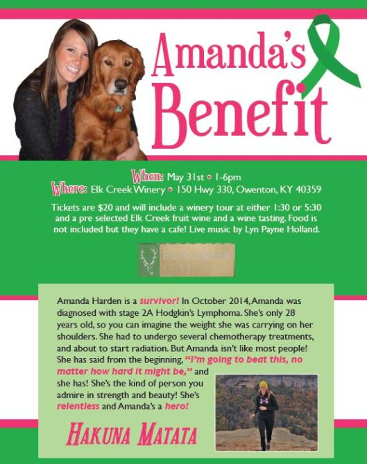 Amandas Benefit Concert at Elk Creek - 5-31-15