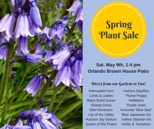 Spring Plant Sale at Liberty Hall - 5-9-15