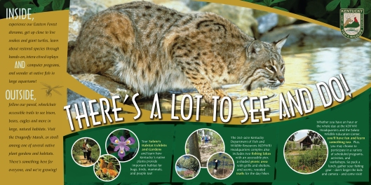 Salato Wildlife Education Brochure 2011-2