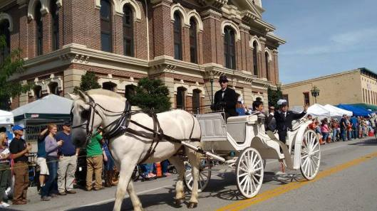 Festival of the Horse in Georgetown - Sept9-11