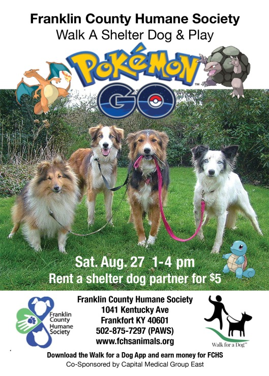 PokemanDogwalking_fchs