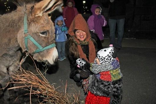 nativity-petting-zoo
