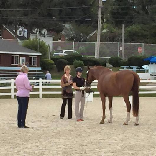 dressage-clinic-with-kristi-wysocki